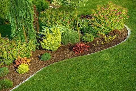 تنسيق حدائق الكويت  Service-landscaping